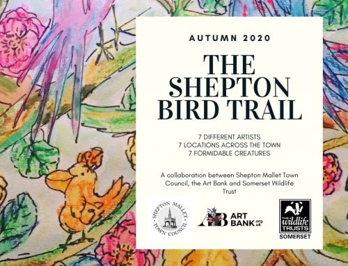 The Shepton Bird Trail arrives this Autumn